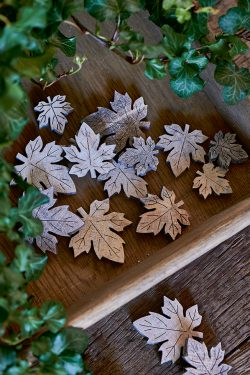Cottonwood Decoration Leaves