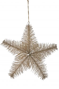 Aspen Snowstar Ornament champagne L