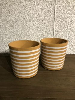 Botanical Stripe Pot
