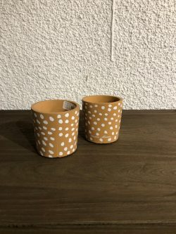 Botanical Dots Pot